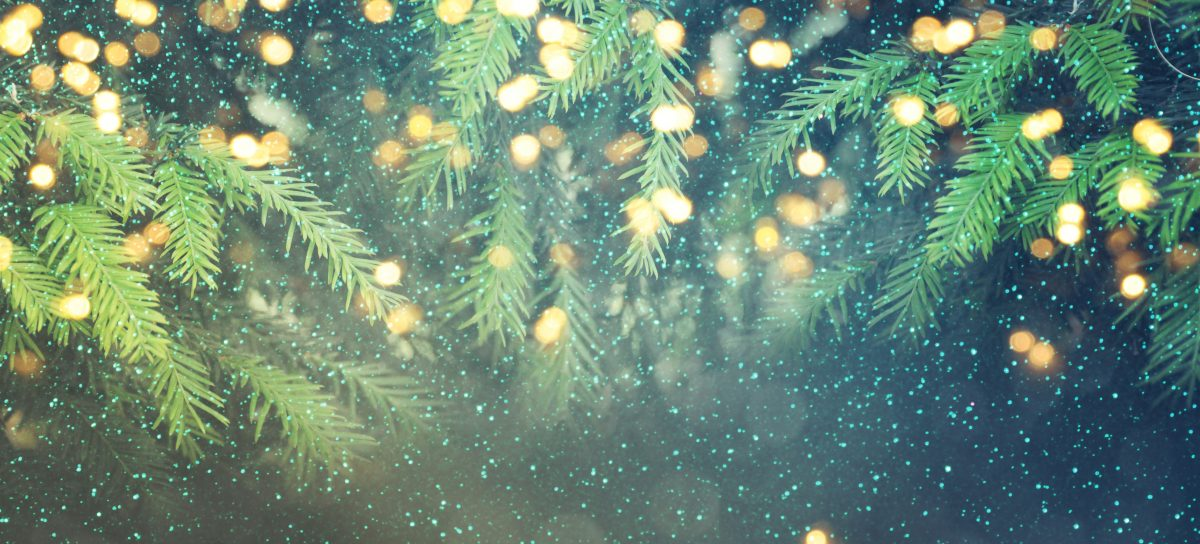 East Cheshire Hospice Christmas Tree Collection 2019
